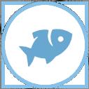 Seafoodinfo.eu